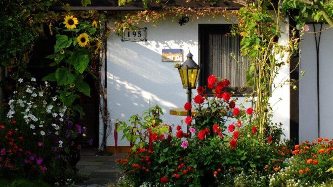 Ein neuer Gemeinschaftsgarten bringt mehr Natur in die Stadt. (Foto: pixabay)