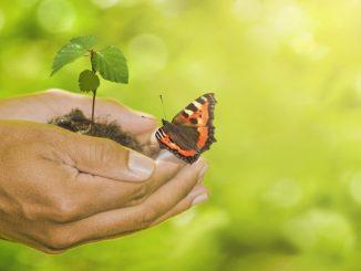 Klimaschutz fängt bei jedem Einzelnen an (Foto: Fotolia.com © by-studio #258986426)