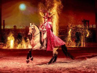 Celebration Time für alle Pferdefans mit CAVALLUNA