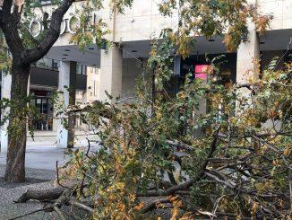 Der Tag nach dem Sturm – Dank an Einsatzkräfte und grobe Schadensbilanz