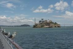 View of Alcatraz