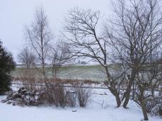 Sneen dækker græsplænen - men ikke marken