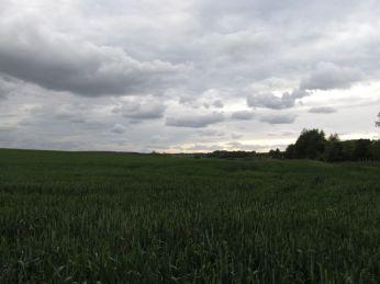 Hvis skyerne skal med, bliver marken mørk