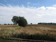 12.August - resten af høsten må vente endnu et par dage