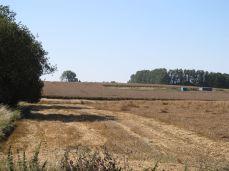 18.August - stadig ikke høstet færdig