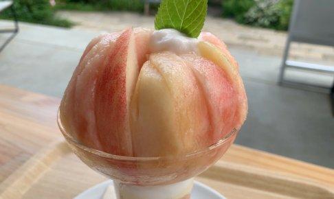 【山梨県 河口湖】ハナテラス 葡萄屋kofuハナテラスCafe
