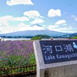 山梨県 河口湖畔 大石公園周辺散策 ダヤンテールblog