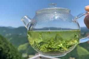 静岡県 天空の茶の間【豊好園】ダヤンテールblo