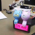 8月23日ラジオエフフレンズ出演 ダヤンテールblog