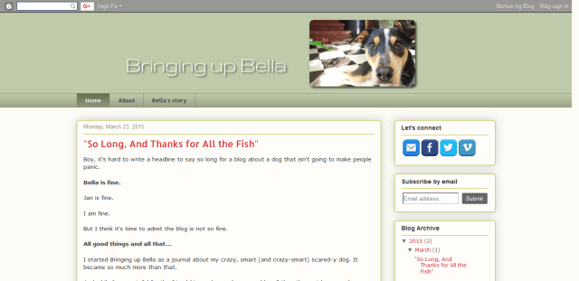 Screenshot 2018 07 30 Bringing up Bella - 4 incredibly adorable and hilarious blogs about dogs to check out