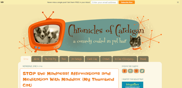 Screenshot 2018 07 30 The Chronicles of Cardigan - 4 incredibly adorable and hilarious blogs about dogs to check out