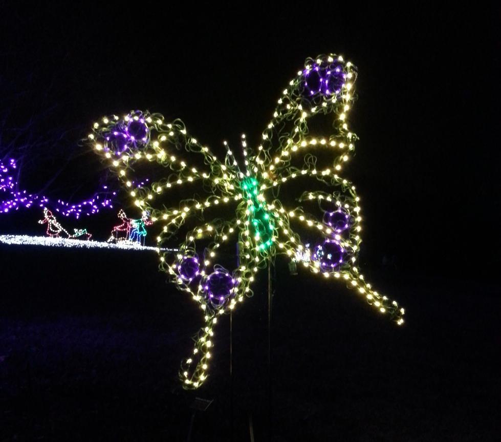 Meadowlark Botanical Gardens Meadowlarks Winter Walk Lights