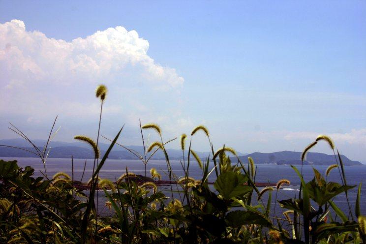 5 Oshima1