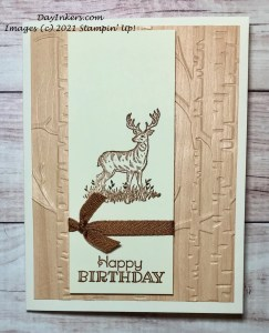 Clean and Simple masculine birthday card featuring Stampin' Up! Rustic Retreat and Woodland embossing folder.