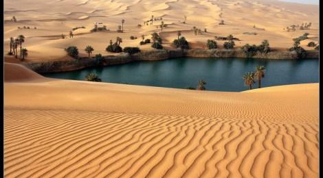 Ramón y Cajal, un oasis en el desierto