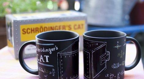 La taza de Schrödinger (visitando el museo del MIT)