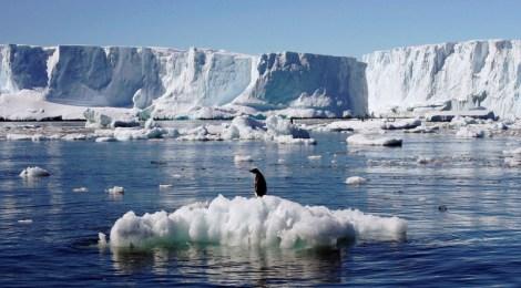 YA: lo que importa sobre el cambio climático