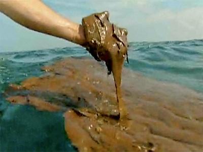 Deepwater Horizon Gulf oil spill