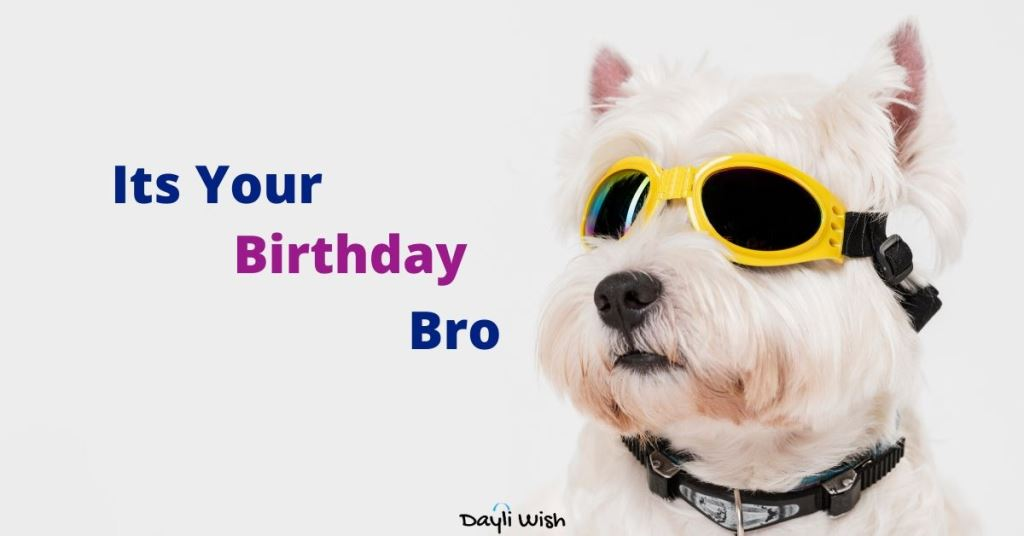 Happy Birthday Sweet Brother Love Fun Wishes Dayli Wish