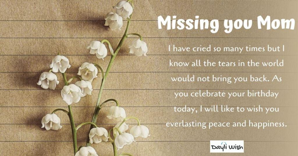 Best 200 Happy Birthday Mom Birthday Wishes For Mother Dayli Wish