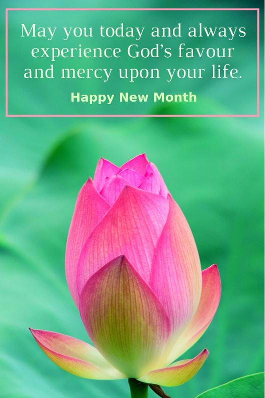 May you today and always experience God's favour and mercy upon your life