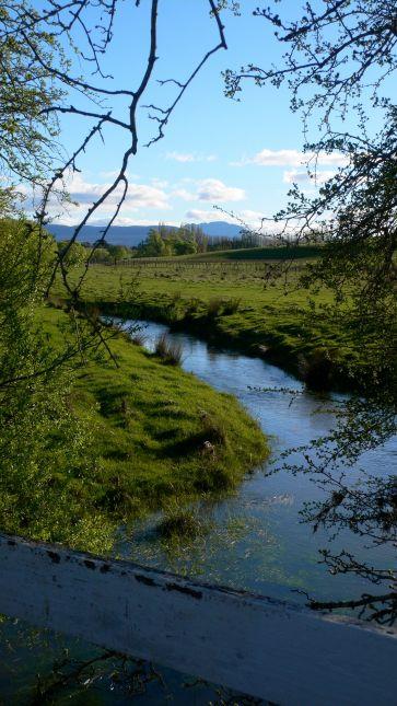 Creek running through Quamby Estate