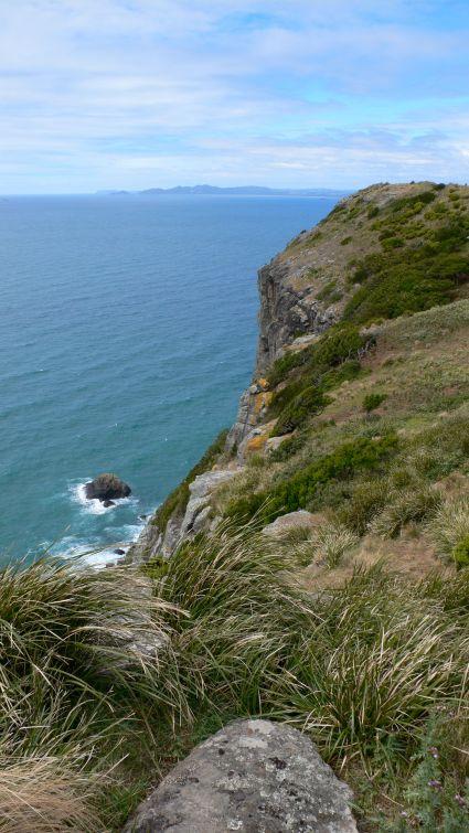 Coastal side of the Nut