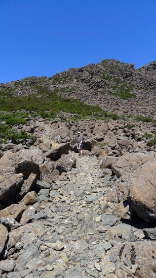 Rocky track - this would have taken someone a LOT of work to make