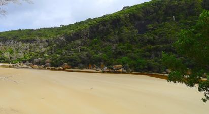 Tidal River earlier in the day