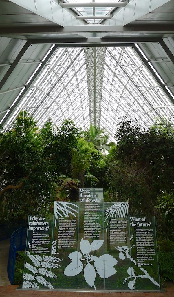 Stepping inside the Bicentennial Conservatory