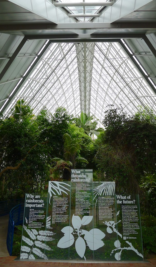 Stepping inside the Bicentennial Conservatory