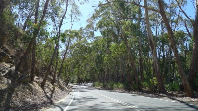 Mt Lofty scenic drive 2
