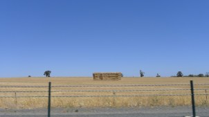 One of many stacks of hay bales