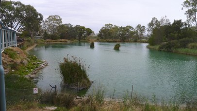 Maggie's farm pond