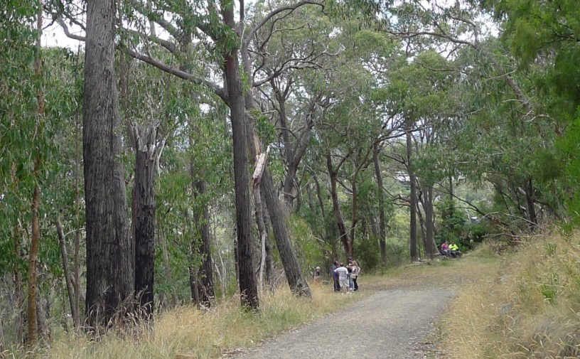 Belview Tce - You'll pass plenty of other people from barely shod casual walkers, to fitness fanatics, to bushwalkers like us