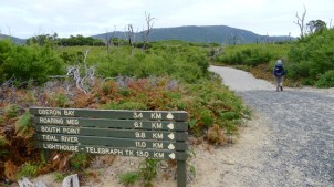 Sign 'A' next to Oberon Bay Walking Track (OBWT), showing OBWT