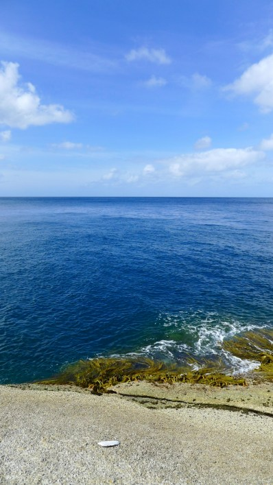 The blue, blue sea. I wasn't thinking of a swim... more along the lines of seals and sharks?
