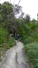 2/8 A small pocket of lush vegetation ahead