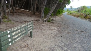 Sign 'C' opposite (Little) Waterloo Bay Walking Track, showing view north along Telegraph Track