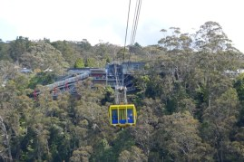 Scenic Skyway returns to homebase