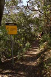 A reminder to engage your brain when bushwalking