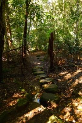 Stepping stones across Banksia Stremlet