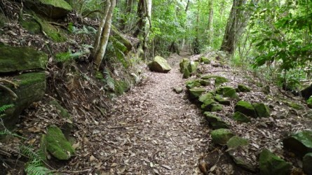 The moss covered rocks are beautiful but remind me that the original path would have been a challenge to make