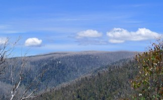 Looking across to Lake Mountain, also severly burnt in the 2009 Black Saturday Bushfires