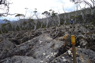 Crossing the boulder field is not very hard - just look for the next marker