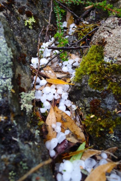 Small hailstones collected between the rocks along the path