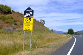 The car-lifting kangaroo is probably my favourite road sign in Tassie, but the message is a sober one