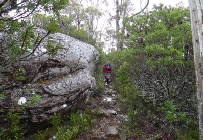 The rocky path along the ridgeline above Lake Nicholls