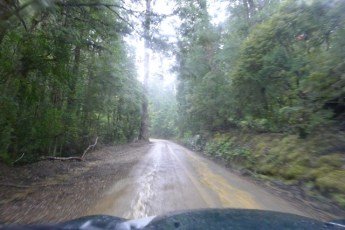 Wet, but the road surface was pretty good