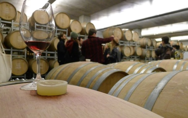 In the barrel room during the Moorilla winery tour